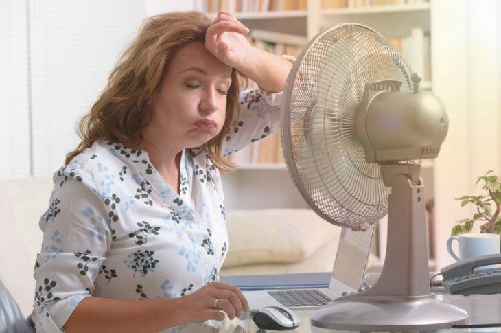 Ventilateur Dyson